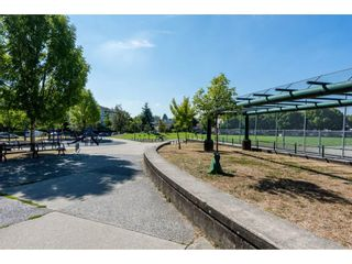 Photo 20: 213 3588 VANNESS Avenue in Vancouver: South Vancouver Condo for sale (Vancouver East)  : MLS®# R2301634