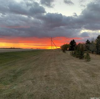 Photo 17: Skudesness Road Acreage 1/4 mile West of Davidson in Willner: Residential for sale (Willner Rm No. 253)  : MLS®# SK845153