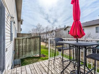 Photo 44: 158 Citadel Meadow Gardens NW in Calgary: Citadel Row/Townhouse for sale : MLS®# A1112669