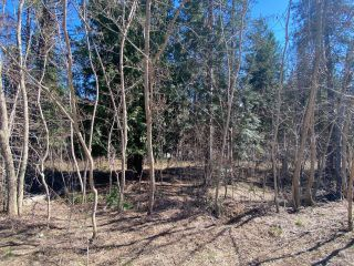 Photo 16: Lot L VIEW RIDGE ROAD in Nelson: Vacant Land for sale : MLS®# 2460797