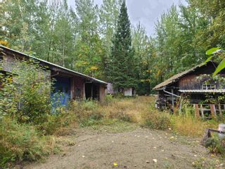 Photo 10: 4453 MOUNTAIN VIEW Road in McBride: McBride - Town Land for sale (Robson Valley (Zone 81))  : MLS®# R2616224