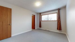 Photo 14: 3807 49 Street NE in Calgary: Whitehorn Detached for sale : MLS®# A1066626