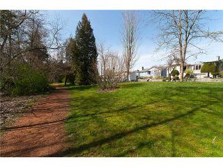 Photo 10: 3043 ROSEMONT Drive in Vancouver: Fraserview VE House for sale (Vancouver East)  : MLS®# V942575