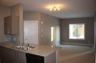Photo 8: 2104 4641 128 Avenue NE in Calgary: Skyview Ranch Apartment for sale : MLS®# A1087659