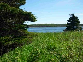 Photo 10: - Little Liscomb Road in Little Liscomb: 303-Guysborough County Vacant Land for sale (Highland Region)  : MLS®# 201728127