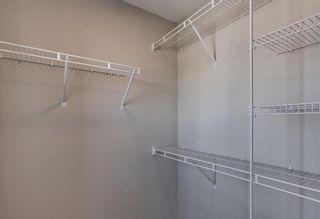 Photo 26: 286 Cornerstone Crescent NE in Calgary: Cornerstone Detached for sale : MLS®# A1075287