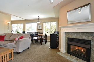 """Photo 5: 304 20433 53 Avenue in Langley: Langley City Condo for sale in """"Countryside Estates"""" : MLS®# R2254619"""