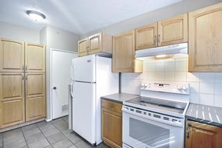 Photo 7: 91 Chancellor Way NW in Calgary: Cambrian Heights Detached for sale : MLS®# A1119930