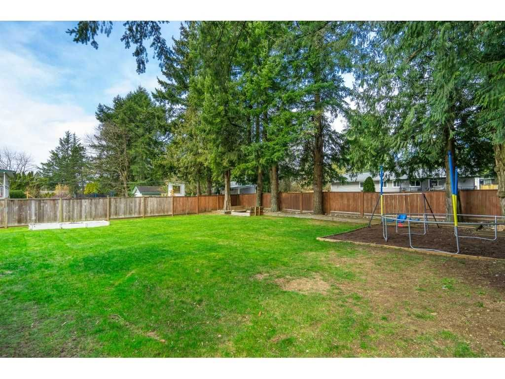 Photo 36: Photos: 34119 LARCH Street in Abbotsford: Central Abbotsford House for sale : MLS®# R2547045