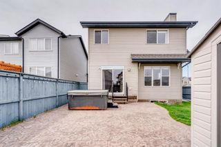 Photo 42: 1571 COPPERFIELD Boulevard SE in Calgary: Copperfield Detached for sale : MLS®# A1107569