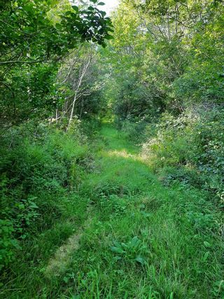 Photo 3: Lot Granville Road in Port Wade: 400-Annapolis County Vacant Land for sale (Annapolis Valley)  : MLS®# 202122243