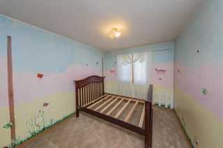Photo 15: 3652 33 Street in Edmonton: Zone 30 House for sale : MLS®# E4223561