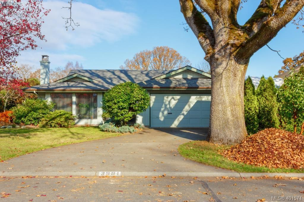 Main Photo: 3991 Hopesmore Dr in VICTORIA: SE Mt Doug House for sale (Saanich East)  : MLS®# 801374