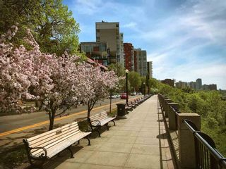 Photo 29: 405 10028 119 Street in Edmonton: Zone 12 Condo for sale : MLS®# E4241915