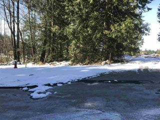 """Photo 6: 12105 270 Street in Maple Ridge: East Central Land for sale in """"ROTHSAY ESTATES"""" : MLS®# R2242844"""