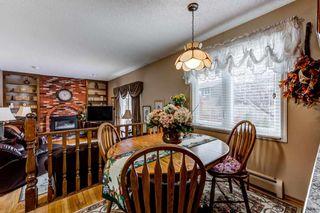 Photo 15: 10536 26 Avenue in Edmonton: Zone 16 House for sale : MLS®# E4241247
