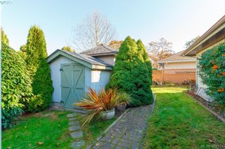 Photo 21: 3991 Hopesmore Dr in VICTORIA: SE Mt Doug House for sale (Saanich East)  : MLS®# 801374