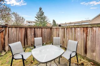 "Photo 19: 51 17708 60 Avenue in Surrey: Cloverdale BC Condo for sale in ""Clover Gardens"" (Cloverdale)  : MLS®# R2550591"