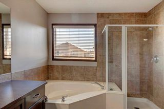 Photo 20: 279 CHAPALINA Terrace SE in Calgary: Chaparral House for sale : MLS®# C4128553