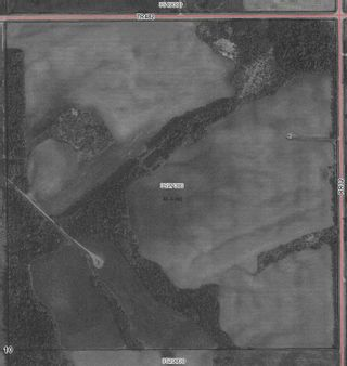 Photo 4: TWP 482 RR 32: Rural Leduc County Rural Land/Vacant Lot for sale : MLS®# E4249796