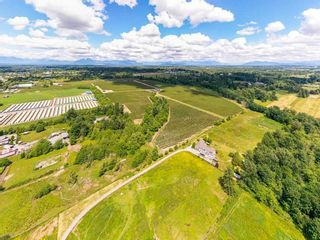 Photo 5: 21.44AC 240 STREET in Langley: Langley City Agri-Business for sale : MLS®# C8038637
