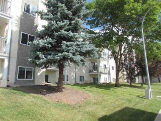 Photo 10: 105 6710 158 Avenue in Edmonton: Zone 28 Condo for sale : MLS®# E4236997