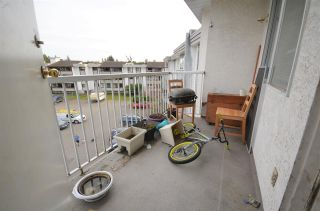 """Photo 15: 309 2535 HILL-TOUT Street in Abbotsford: Abbotsford West Condo for sale in """"Woodridge Estates"""" : MLS®# R2560963"""