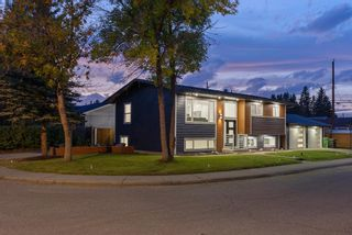 Photo 32: 10011 Warren Road SE in Calgary: Willow Park Detached for sale : MLS®# A1146129