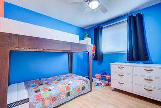 Photo 22: 13212 SHERBROOKE Avenue in Edmonton: Zone 04 House for sale : MLS®# E4254723