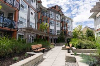 Photo 22: 408 14605 MCDOUGALL Drive in Surrey: Elgin Chantrell Condo for sale (South Surrey White Rock)  : MLS®# R2564482