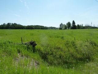 Photo 10: 57525 Rg Rd 214: Rural Sturgeon County Rural Land/Vacant Lot for sale : MLS®# E4237624