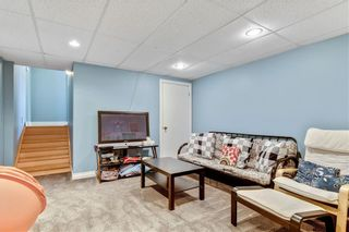 Photo 29: 359 Queen Charlotte RD SE in Calgary: Queensland RES for sale : MLS®# C4287072