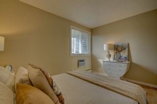Photo 19: 309 8604 Gateway Boulevard in Edmonton: Zone 15 Condo for sale : MLS®# E4257711