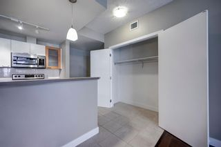 Photo 9: 201 315 24 Avenue SW in Calgary: Mission Apartment for sale : MLS®# A1062504