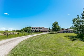 Photo 3: 290034 16 Street W: Rural Foothills County Detached for sale : MLS®# A1065848