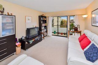 Photo 7: 203 1537 Morrison St in Victoria: Vi Jubilee Condo for sale : MLS®# 870633