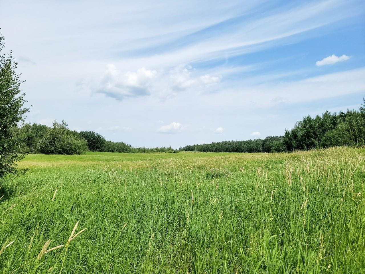 Main Photo: RR 222 TWP 504 LOT 1: Rural Leduc County Rural Land/Vacant Lot for sale : MLS®# E4254469