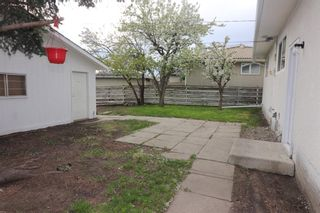 Photo 39: 56 Penedo Place in Calgary: Penbrooke Meadows Detached for sale : MLS®# A1113774