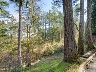 Photo 24: 1062 River Rd in VICTORIA: Hi Bear Mountain House for sale (Highlands)  : MLS®# 806632