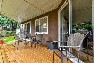Photo 17: 101 6866 NICHOLSON Road in Delta: Sunshine Hills Woods Condo for sale (N. Delta)  : MLS®# R2116344
