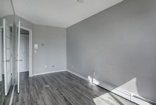 Photo 22: 402 2130 17 Street SW in Calgary: Bankview Apartment for sale : MLS®# A1104812