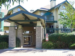 """Photo 53: 217 83 STAR Crescent in New_Westminster: Queensborough Condo for sale in """"RESIDENCE BY THE RIVER"""" (New Westminster)  : MLS®# V728524"""