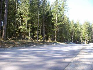 Photo 1: 12925 246TH Street in Maple Ridge: Websters Corners Land for sale : MLS®# V814105