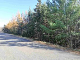 Photo 3: Lot 1 Hirem Lynds Road in Central North River: 104-Truro/Bible Hill/Brookfield Vacant Land for sale (Northern Region)  : MLS®# 202122060