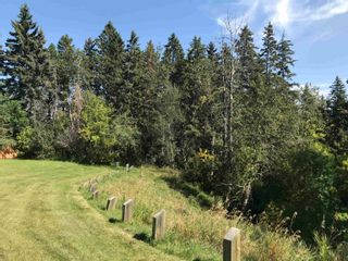 Photo 7: 9331 148 Street in Edmonton: Zone 10 Vacant Lot for sale : MLS®# E4258351