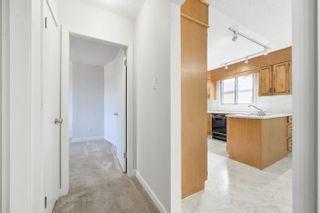 Photo 13: 8 HERON Road: Sherwood Park House for sale : MLS®# E4260376