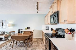 Photo 19: 302 920 ROYAL Avenue SW in Calgary: Lower Mount Royal Apartment for sale : MLS®# A1134318