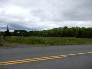 Photo 9: River John Road in Scotch Hill: 108-Rural Pictou County Vacant Land for sale (Northern Region)  : MLS®# 202115411