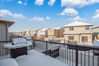 Photo 27: 558 PANAMOUNT Boulevard NW in Calgary: Panorama Hills Detached for sale : MLS®# A1068812