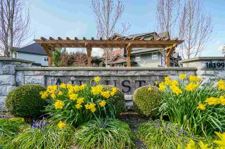 """Main Photo: 5 18199 70 Avenue in Surrey: Cloverdale BC Townhouse for sale in """"AUGUSTA"""" (Cloverdale)  : MLS®# R2563480"""